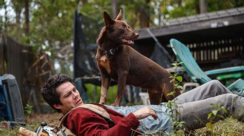 Dylan O'Brien's Love And Monsters Pranks - Exclusive