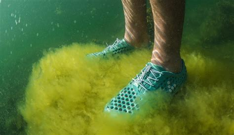 This Shoe Made from Algae Literally Reduces Your Carbon